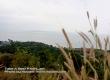 พาเที่ยว รอบเกาะล้าน พัทยา ชลบุรี หาดตาแหวน หาดเทียน หาดนวล