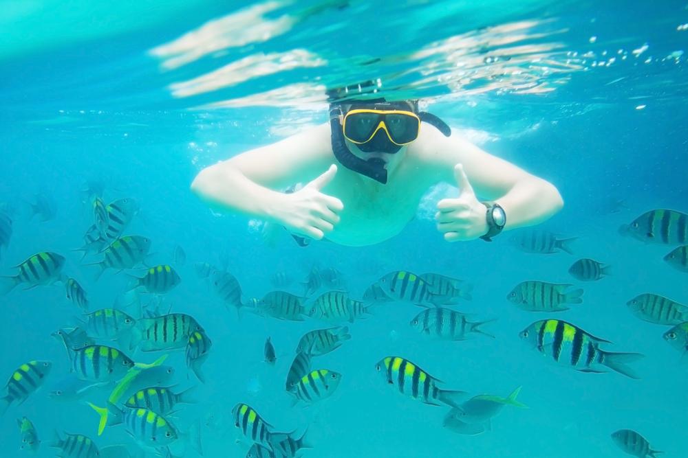 แนะนำ 5 เกาะดำน้ำสุดฮิตในภาคใต้ ประเทศไทย ที่ต้องเที่ยวในหน้าร้อนนี้