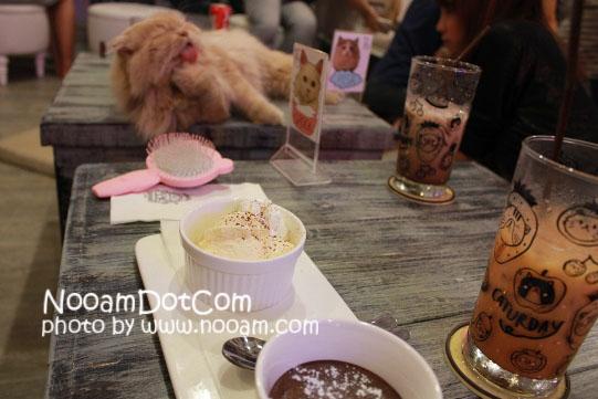รีวิวร้าน Caturday cat cafe คาเฟ่แมวและเบเกอรี่เค้ก ติด BTS ราชเทวี