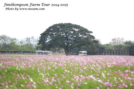 พาเที่ยว จิมทอมสัน ฟาร์ม 2557 (Jim Thompson Farm) วังน้ำเขียว ปักธงชัย นครราชสีมา