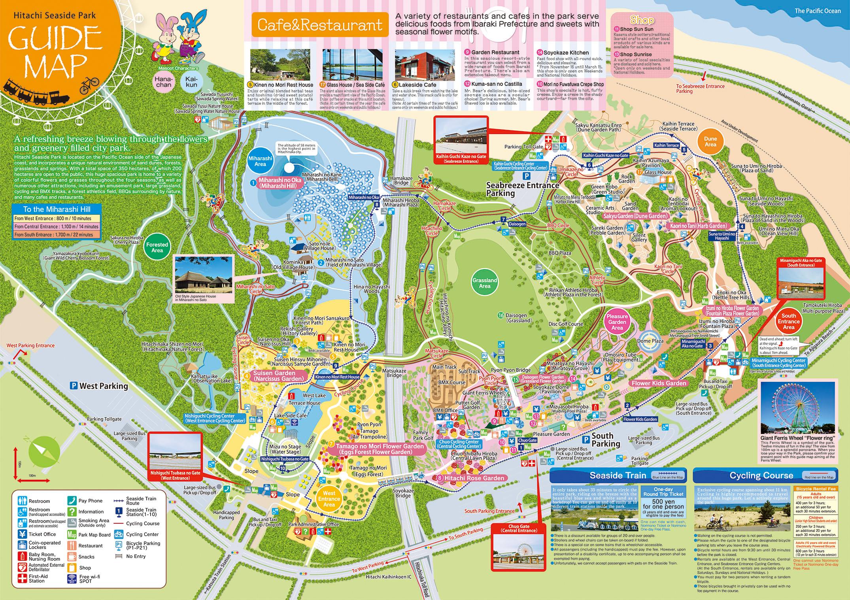 แผนที่สวน hitachi seaside park ชมทุ่งดอกเนโมฟีเลีย พร้อมวิธีการเดินทางแบบง่ายๆ ที่อิบารากิ ญี่ปุ่น